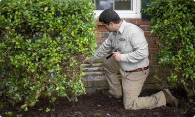 houston tx pest control pro inspecting exterior of home