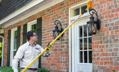 dallas pest control expert performing wasp nest removal service