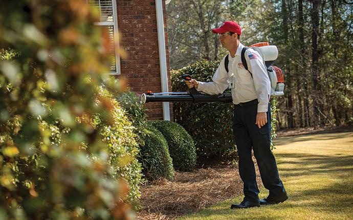 an aiken pest professional treating for mosquitoes