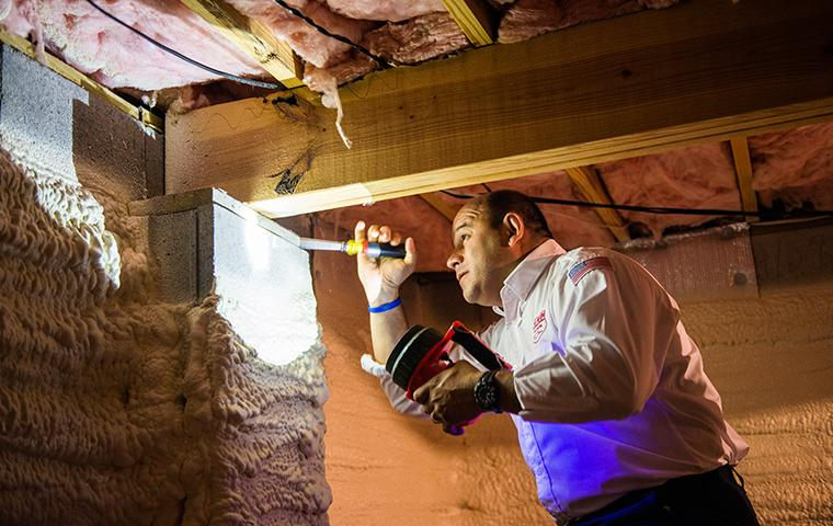 aiken tech inspecting crawl space in home
