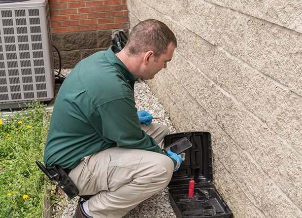 a technician inspecting a rodent station