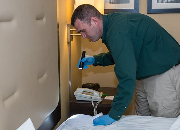 a tech checking a bed for bed bugs