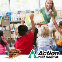 classrooms with bed bugs can cause infestations in indiana