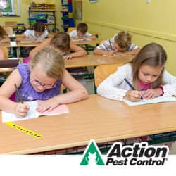 Back To School Pest Control In Indianapolis