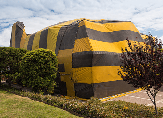fumigation tent on business