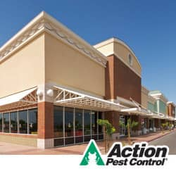 Pest Control For KY Businesses