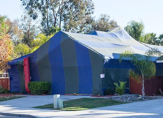 a large black and blue fumigation house shaped tent covering an illinois home
