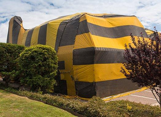 a house tented for fumigation