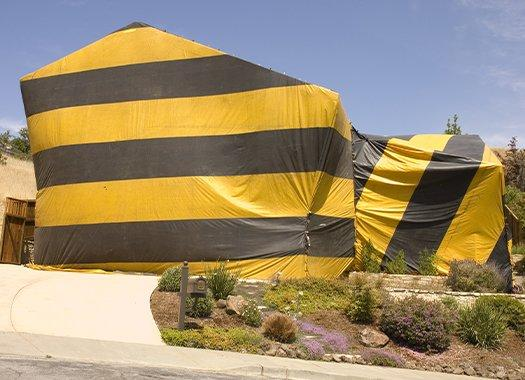 a fumigation tent on a home