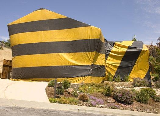 a pest control fumigation tent