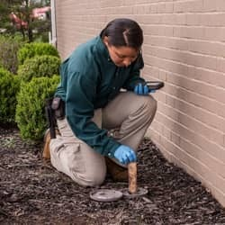 termite technician servicing bait station