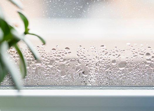 moisture in a window
