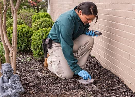 a professional terre haute pest control technician treating a residential property for termite infestations
