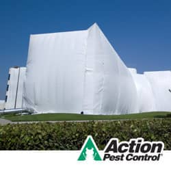 commercial building prepared for fumigation