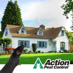 Louisville Pest Prevention