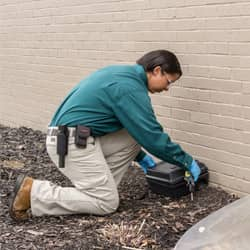 action technician placing rodent bait station