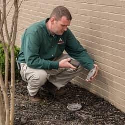 termite control technician checking bait station