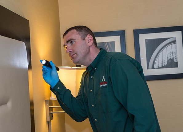 a tech inspecting a head board