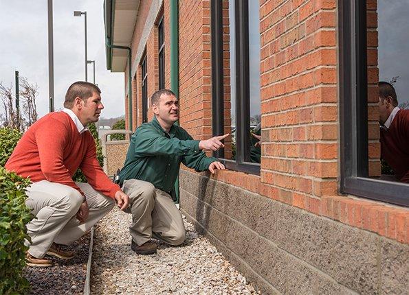 commercial pest control inspection