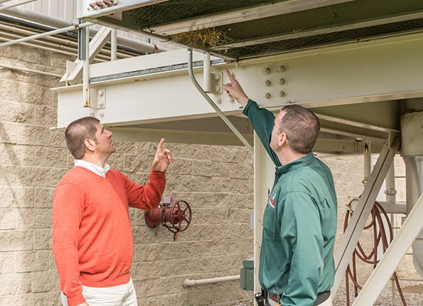 commercial pest inspection with business owner