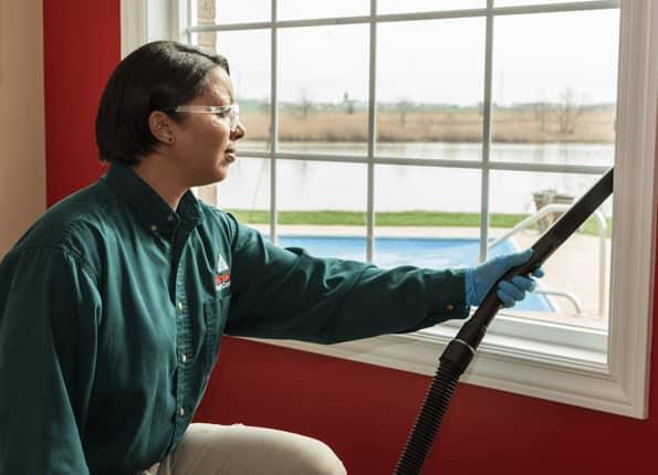 pest technician vacuuming windowsill