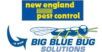 new england pest control logo and big blue bug solutions logo