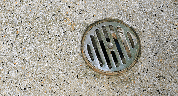 commercial floor drain