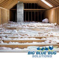 attic in providence with pest control insulation installed