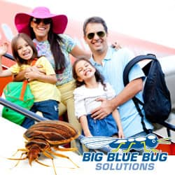 Bed Bug Prevention Tips