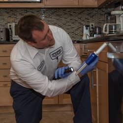 big blue bug solutions technician