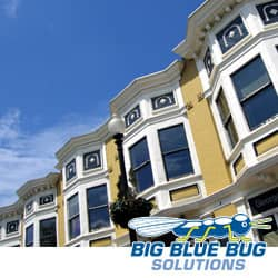 Bed Bug Control In Worcester Apartments