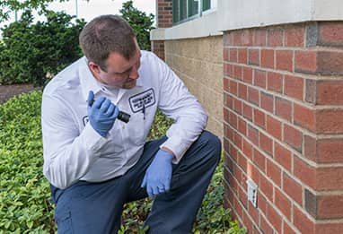 ri pest control technician inspecting a home
