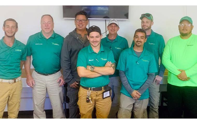 green tech termite team