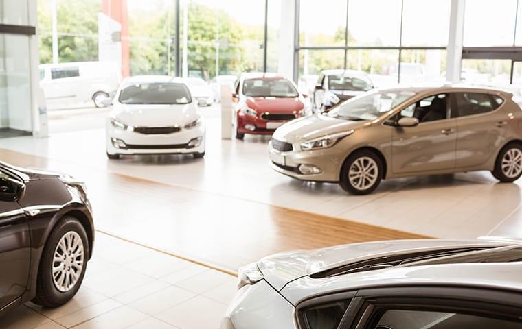 interior of a car dealership in frisco texas
