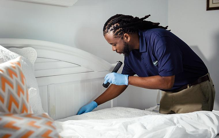 bed bug inspection in a home on grand turk island