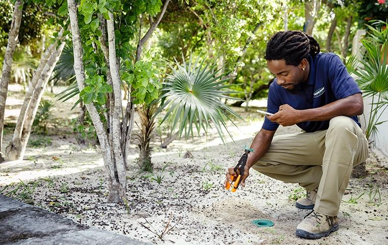 termite station inspection at a home on grand turk island