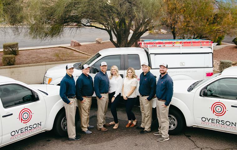 overson pest control team in mesa arizona