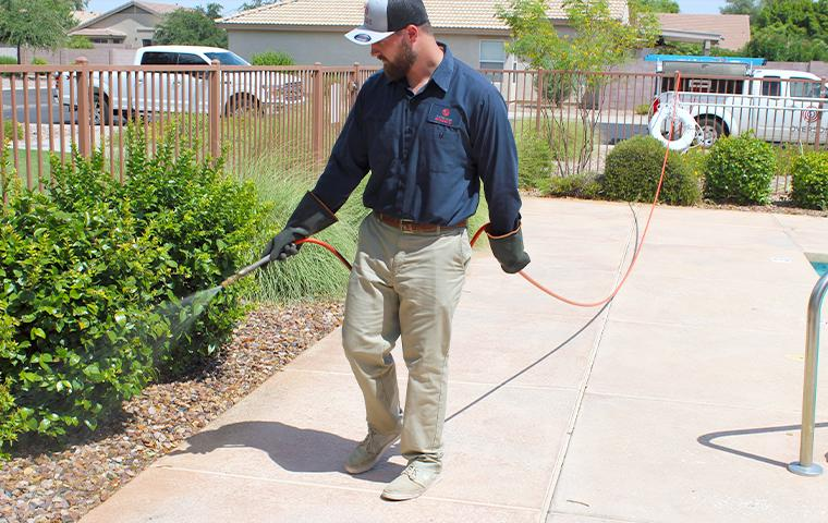 technician treating the exterior of a house in mesa arizona
