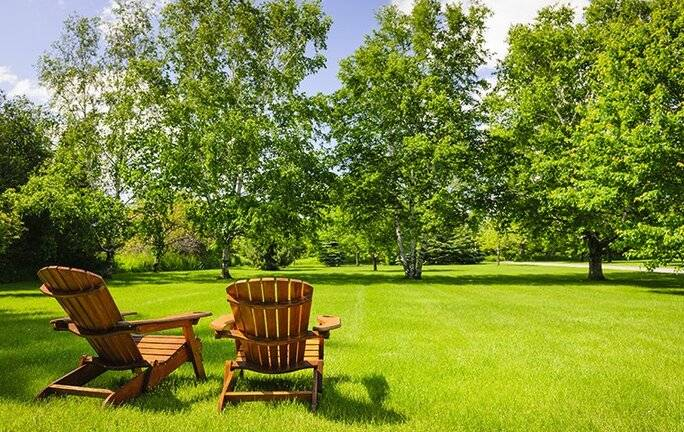 chairs sitting in green lawn