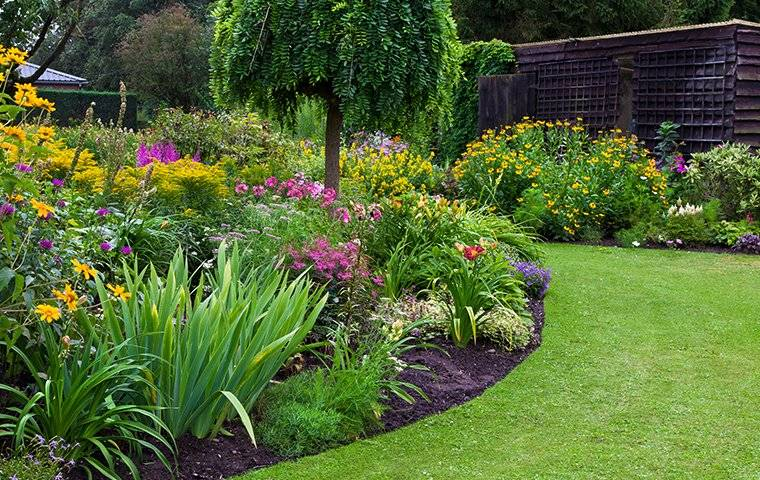 lawn and flower bed
