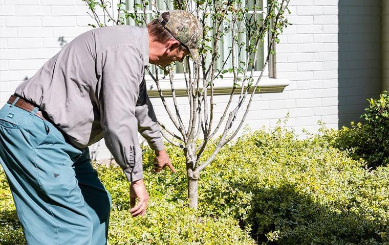 technician inspecting exterior in tarrant county