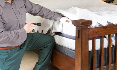 technician inspecting bed for bedbugs