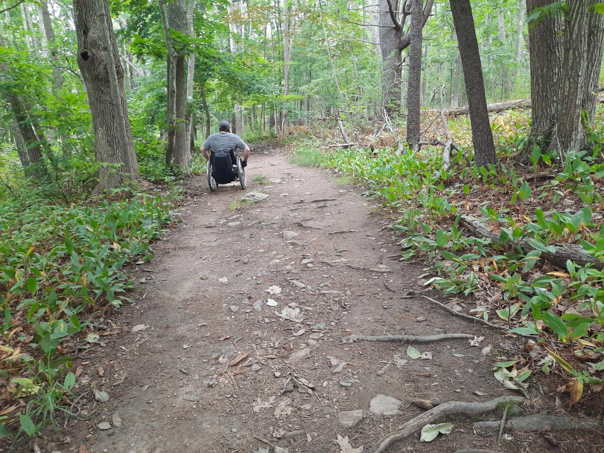 A man uses a wheelchair on a trail with small roots and rocks.
