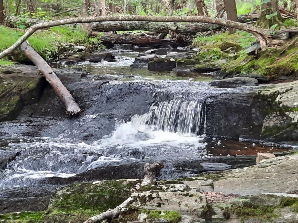 Waterfall along the Pond Trail. Photo credit: Enock Glidden