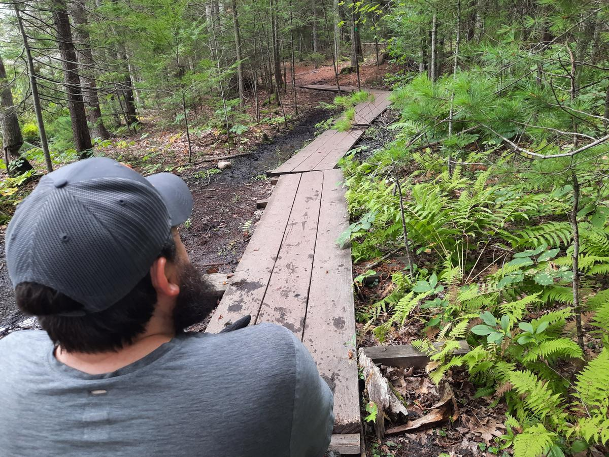 Bog bridges with 3 boards are crossable with a wheelchair. Photo credit: Enock Glidden