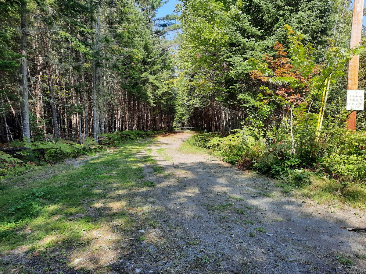 The beginning of the Rangeley River Trail. Photo credit: Enock Glidden