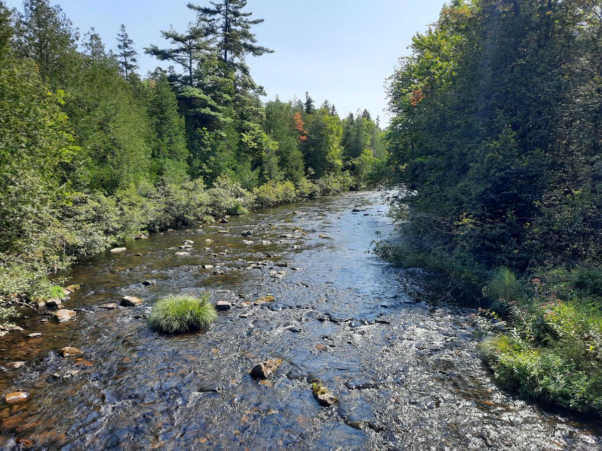 View of the Rangeley River. Photo credit: Enock Glidden
