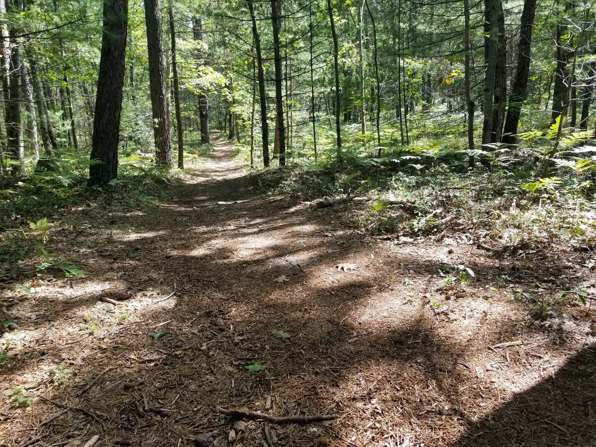 Trail surface on the continuation of the White Trail. Photo credit: Enock Glidden