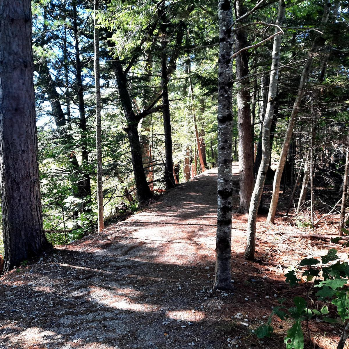 The Valentine Farm trail. Photo credit: Enock Glidden