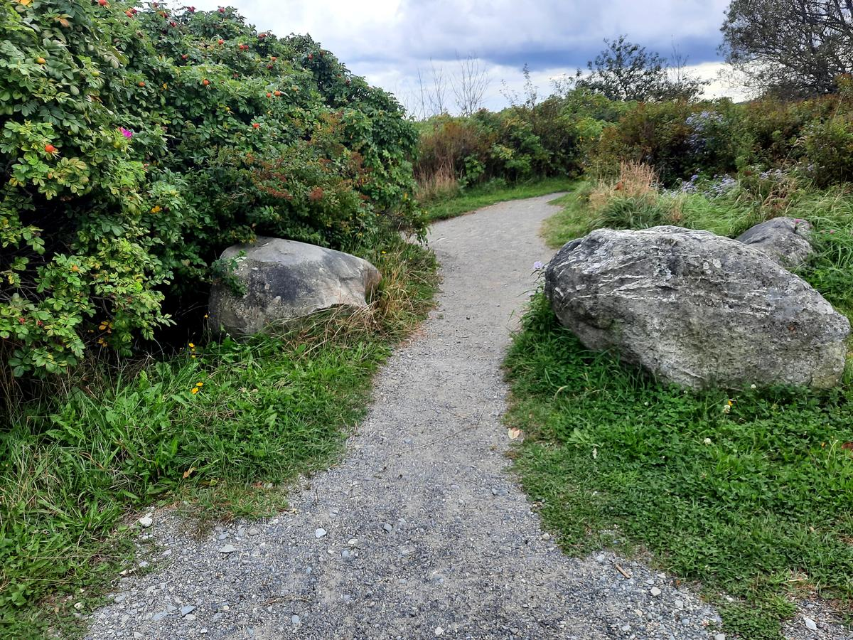 The entrance between two boulders. Photo credit: Enock Glidden